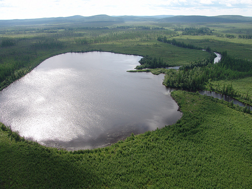 Lake Cheko: In June 2007, scientists from the University of Bologna led by professor Giuseppe Longo identified a lake in the Tunguska region as a possible impact crater from the event. They do not dispute that the Tunguska body exploded in midair but believe that a one-meter fragment survived the explosion and struck the ground. Pollen analysis reveals that remains of aquatic plants are abundant in the top post-1908 sequence but are absent in the lower pre-1908 portion of the core. These results, including organic C, N and δ13C data, suggest that Lake Cheko formed at the time of the Tunguska Event.